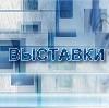 Выставки в Новотроицке