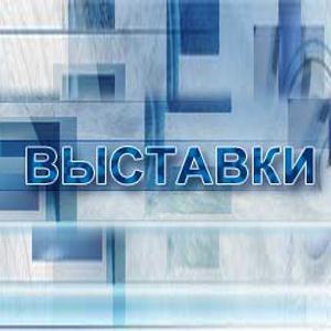Выставки Новотроицка